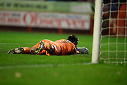 James McKeown after Crawley Town scored their second goal during the EFL Sky Bet League 2 match between Crawley Town and Grimsby Town FC at the Checkatrade.com Stadium, Crawley, England on 26 November 2016. Photo by Jarrod Moore.