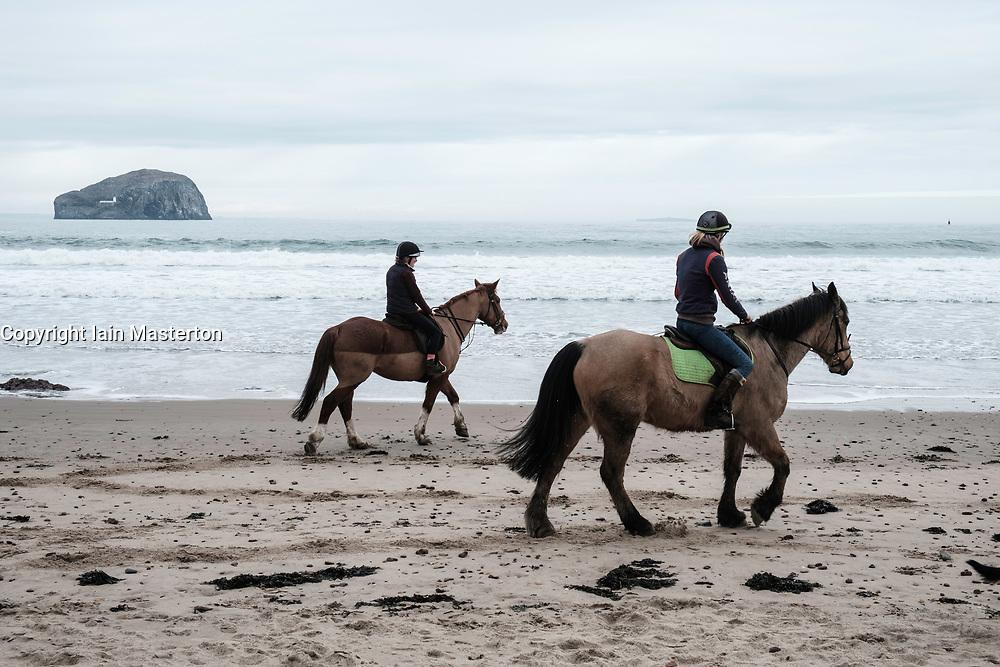 Horses on Seacliff Beach in East Lothian , Scotland, United Kingdom