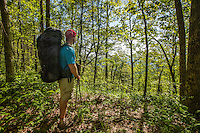 Hiker on Rough Ridge trail in the Cohutta Wilderness, Chattahoochee National Forest