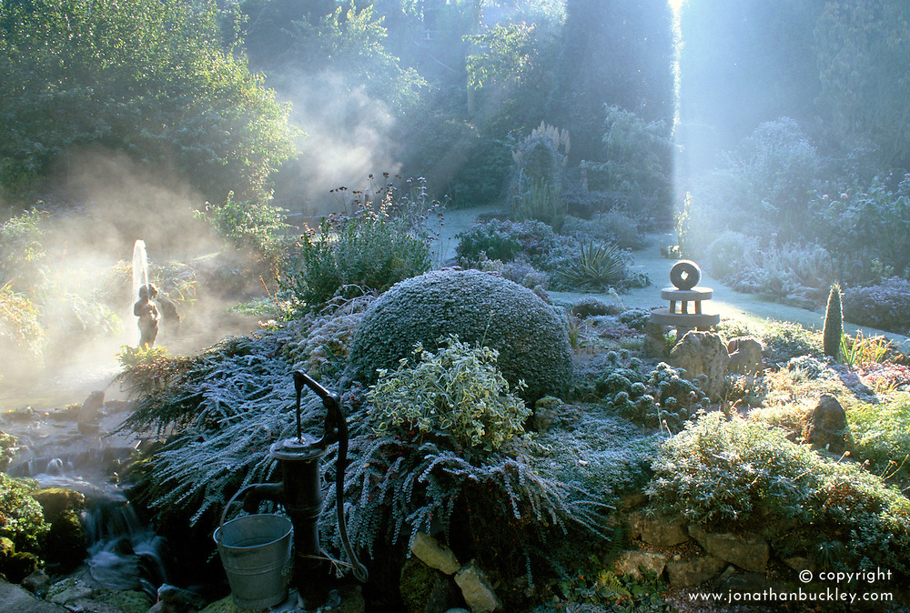 The garden at Upper Mill Cottage in winter with sunlight breaking through the mist.