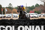 Colonial Cup - Camden, South Carolina. Alajmal, trained by Janet Elliot and ridden by Xavier Aizpuru wins the 2013 Colonial Cup race.