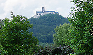 View to Bezdez Castle through trees and bushes in the surrounding nature