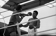 Ali vs Lewis Fight, Croke Park,Dublin..1972..19.07.1972..07.19.1972..19th July 1972..As part of his built up for a World Championship attempt against the current champion, 'Smokin' Joe Frazier,Muhammad Ali fought Al 'Blue' Lewis at Croke Park,Dublin,Ireland. Muhammad Ali won the fight with a TKO when the fight was stopped in the eleventh round...Picture of Lewis as he sticks out a left in trying to drive Ali back.