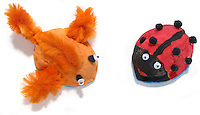 fuzzy orange fish and red and black ladybug