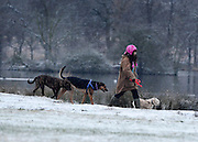 © Licensed to London News Pictures. 14/01/2013. Richmond, UK People walk their dogs in the dusting. Deer and people in the light dusting of snow at Richmond Park this morning. Snow hits the many parts of the UK today 14th January 2013. Photo credit : Stephen Simpson/LNP