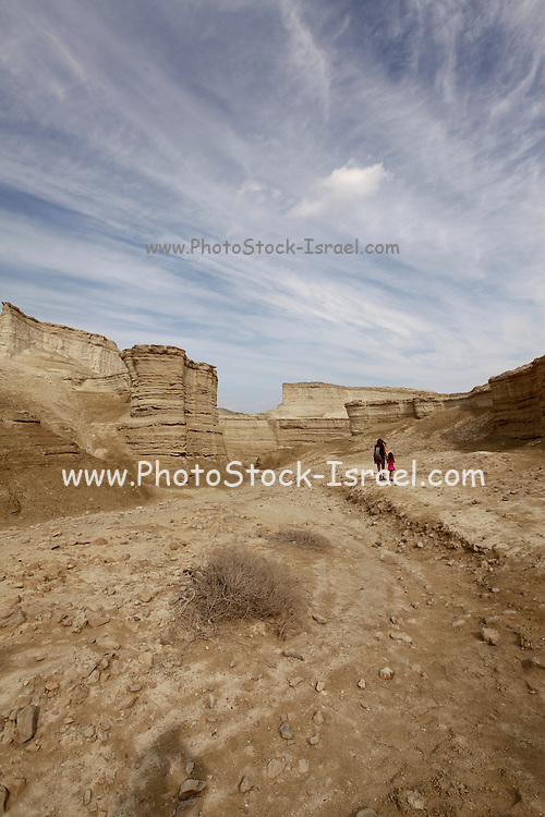Marl stone formations. Eroded cliffs made of marl. Marl is a calcium carbonate-rich, mudstone formed from sedimentary deposits. Photographed in Israel, Dead Sea region