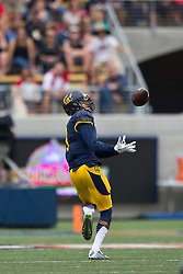 BERKELEY, CA - SEPTEMBER 12:  Wide receiver Trevor Davis #9 of the California Golden Bears catches a pass against the San Diego State Aztecs during the second quarter at California Memorial Stadium on September 12, 2015 in Berkeley, California. The California Golden Bears defeated the San Diego State Aztecs 35-7. (Photo by Jason O. Watson/Getty Images) *** Local Caption *** Trevor Davis