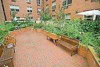 Garden at 736 West 187th St