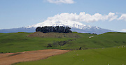 New Zealand Northern Explorer Train journey from Wellington to Auckland on Sunday 01 November 2015 at 0755. <br /> <br /> Sunshine in Wellington on departure, with blue skies on arrival at Auckland at 1830. <br /> <br /> On board crew Bruce, Daniel, Fiona