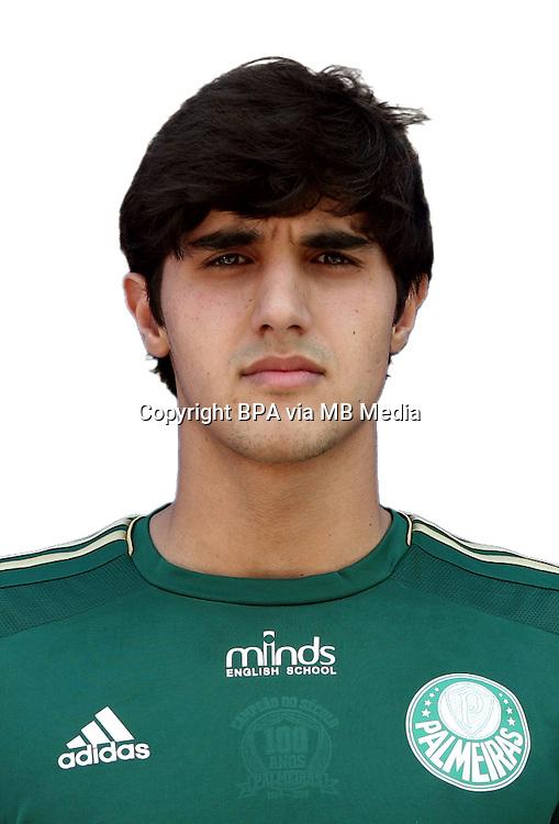 Brazilian Football League Serie A /<br /> ( Sociedade Esportiva Palmeiras ) -<br /> Thiago Martins Bueno