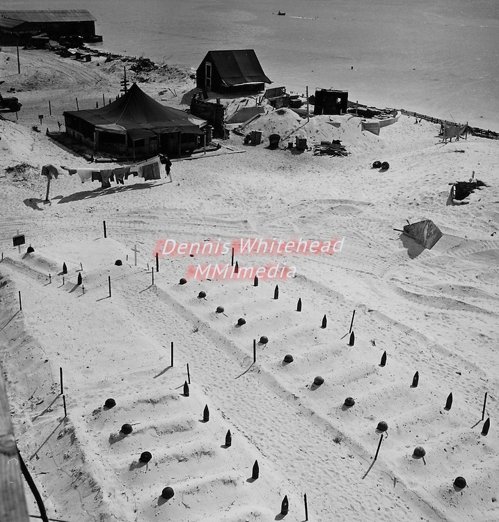 Graves of U.S. Marines who died taking Tarawa Island before headstones were prepared. In the background are the first tents erected after occupation of the island.