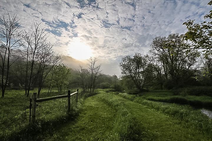 Creekside path in Viroqua  - early morning.