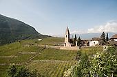 Italy - Bolzano: i produttori del Santa Maddalena