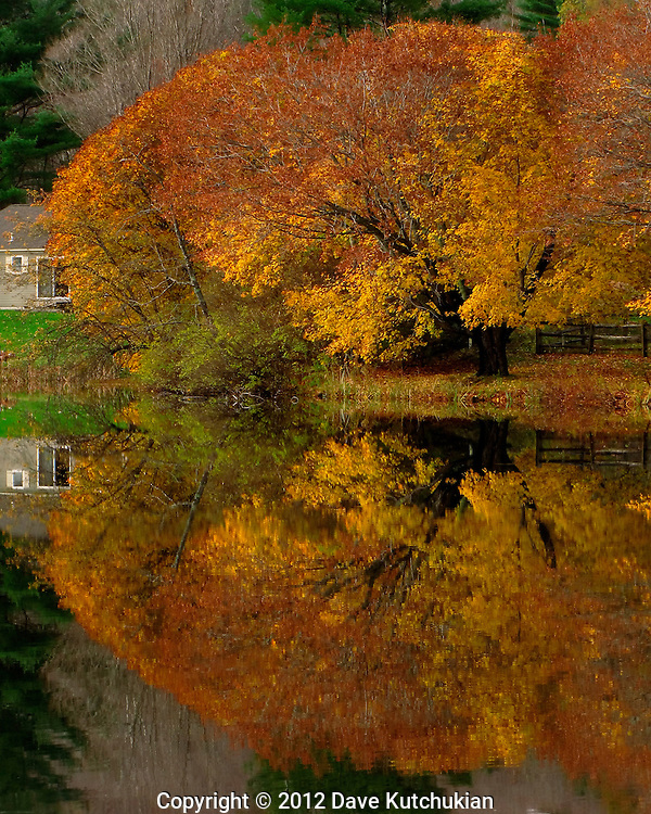 fall foliage reflection, e. dorset,vt