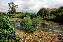UK ENGLAND HAMPSHIRE ST MARY BOURNE 12AUG06 - General view of the Bourne river near St. Mary Bourne, Hampshire...jre/Photo by Jiri Rezac..© Jiri Rezac 2006..Contact: +44 (0) 7050 110 417.Mobile:  +44 (0) 7801 337 683.Office:  +44 (0) 20 8968 9635..Email:   jiri@jirirezac.com.Web:    www.jirirezac.com..© All images Jiri Rezac 2006 - All rights reserved.