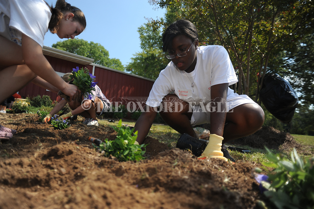 Volunteer Rahmana Pittman installs plants at the More Than A Meal location at Stone Center in a 9/11 Day of Service and Remembrance in Oxford, Miss. on Sunday, September 11, 2011. Volunteers helped with several service activities around abating hunger in the Oxford area.