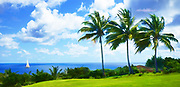 golf course in puerto rico