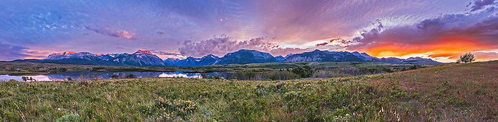 The last rays of sunlight illuminate the peaks at sunset at Waterton Lakes National Park, from the Maskinonge Pond viewpoint, June 20, 2016, summer solstice night. Prairie flowers in full bloom dot the foreground. The main peak being illuminated is Vimy Peak left of centre. <br /> <br /> This is a 7-section panorama with the 24mm lens and Nikon D750, stitched in Adobe Camera Raw.
