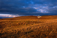 Nebraska Sandhills. Late October light washes a rain-soaked hillside in Cherry County in the Nebraska Sandhills. Rapidly moving cold fronts mark October in the Sandhills, along with wind, rain, snow, and in fleeting moments, heavenly golden light as sharp as a razors edge.