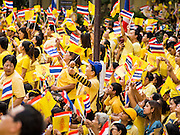 05 DECEMBER 2014 - BANGKOK, THAILAND: Thais hold up portraits of Bhumibol Adulyadej, the King of Thailand, and wave Thai flags in the plaza at Siriraj Hospital to mark the King's 87th Birthday. Thousands of people jammed into the plaza hoping to catch a glimpse of the revered Monarch. He was scheduled to make a rare public appearance in the Grand Palace but cancelled at the last minute on the instructions of his doctors. He has been hospitalized in Siriraj Hospital, across the Chao Phraya River from the Palace, since early October.    PHOTO BY JACK KURTZ
