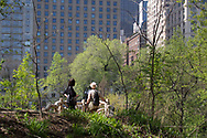 Tourists at a look-out in the Hallett Nature Sanctuary in Central Park.