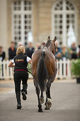 Karin Donckers, (BEL), Fletcha van t Verahof - First Horse Inspection  - Alltech FEI World Equestrian Games™ 2014 - Normandy, France.<br /> © Hippo Foto Team - Shannon Brinkman<br /> 25/06/14