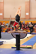 January 17, 2010; Stanford, CA, USA; Stanford Cardinal gymnast Carly Janiga performs on the vault during the meet against the Arizona Wildcats at Burnham Pavilion. The Cardinal defeated the Wildcats 196.025-194.675. Mandatory Credit: Kyle Terada-Terada Photo