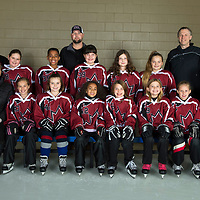 U10-3 Ice Dragons