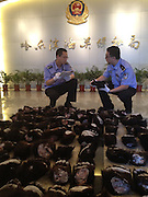 HARBIN, CHINA - AUGUST 09: (CHINA OUT) <br /> <br /> China Customs Officials Confiscate 169 Bear Paws<br /> <br /> A total of 169 smuggled bear paws confiscated by China's Customs officials are shown on August 9, 2013 in Harbin, Heilongjiang Province of China. The bear paws were smuggled from Russia.<br /> ©exclusivepix
