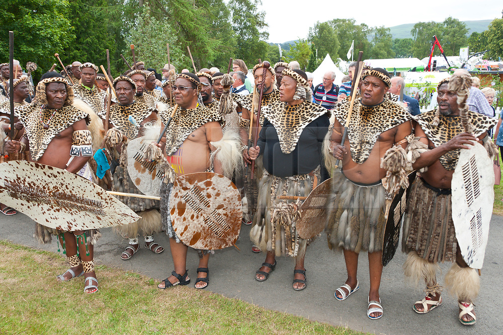 © Licensed to London News Pictures. 22/07/2019. Llanelwedd, Powys, UK.Zulus are invited to the 100th Royal Welsh Agricultural Show. The Royal Welsh Agricultural Show is hailed as the largest & most prestigious event of its kind in Europe. In excess of 200,000 visitors are usually expected for the annual four day show period. The Royal Welsh Agricultural Society was founded in 1904. Photo credit: Graham M. Lawrence/LNP