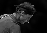 Tennis - 2017 Nitto ATP Finals at The O2 - Day Two<br /> <br /> Group Pete Sampras Singles: Rafael Nadal (Spain) Vs David Goffin (Belguim)<br /> <br /> A single bead of sweat drops from the nose of Rafael Nadal as he prepares to serve at the O2 Arena <br /> <br /> <br /> COLORSPORT/DANIEL BEARHAM