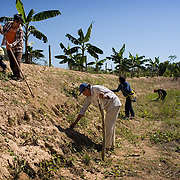 Bolivia. Cocoacobana. Every Saturday the community of Cocacobana come together to work on the camallones. this is followed by a communal meal and discussions of local issues.