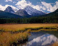 Commonwealth Peak from wetlands of Smuts Creek, Kananaskis Country Alberta Canada