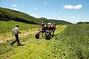 Merck Farm and Forest, Rupert, Vermont.