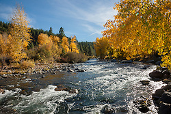 """""""Truckee River in Autumn 5"""" - Photograph of the Truckee River in Autumn near Downtown Truckee, California."""