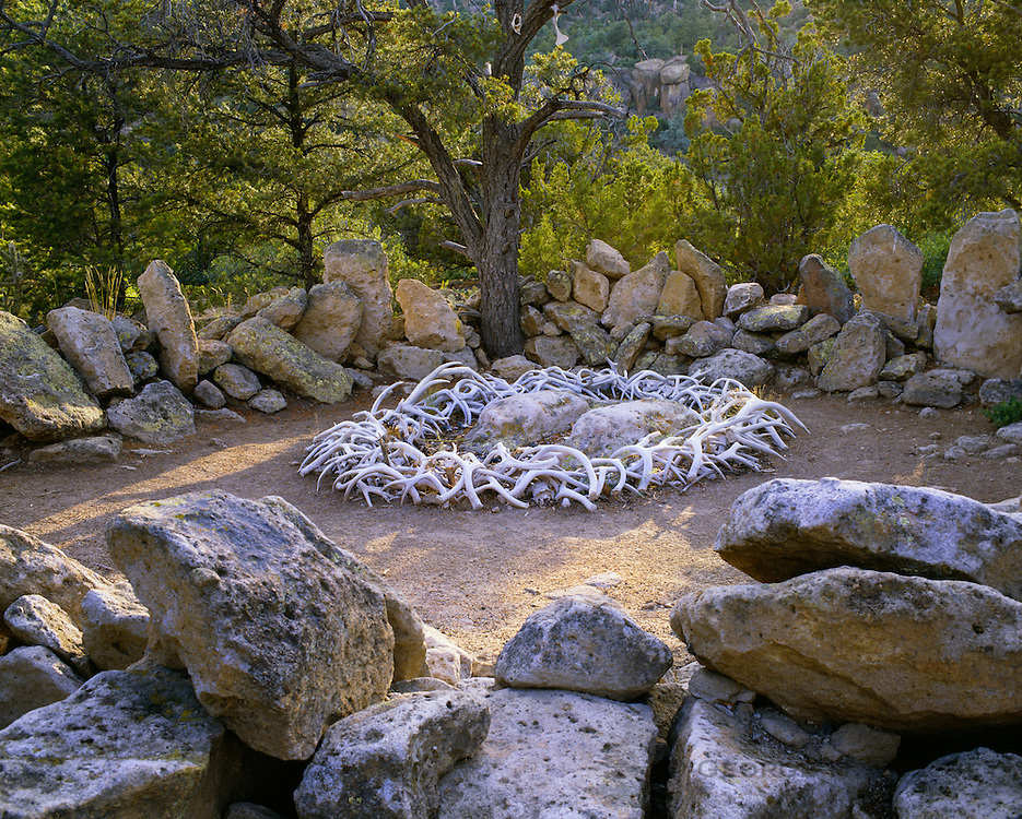 0202-1049 ~ Copyright: George H. H. Huey ~ Shrine of the Stone Lions. Pueblo Indian shrine of two, carved, life-size mountain lions, encircled with deer antlers. Northern New Mexico.