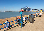 People on beach at viewing area watching shipping in Port of Felixstowe, Suffolk, England, UK