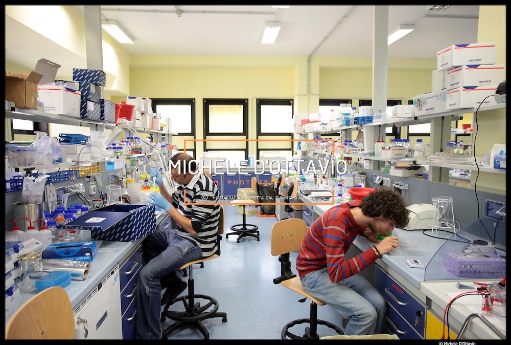Istituto Italiano di Tecnologia di Genova,.. nella foto: Dipartimento di Neuroscienze,..Nei laboratori vengono svolti esperimenti di elettrofisiologia,..in particolare su neuroni, di neurobiologia molecolare e di sviluppo di colture cellulari