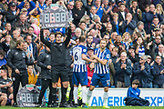 Glenn Murray (Brighton) coming on for Dale Stephens (Brighton) during the Premier League match between Brighton and Hove Albion and Tottenham Hotspur at the American Express Community Stadium, Brighton and Hove, England on 5 October 2019.