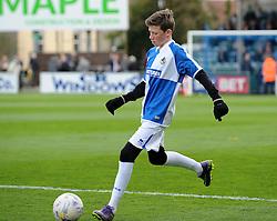 Mascot - Mandatory by-line: Neil Brookman/JMP - 16/04/2016 - FOOTBALL - Memorial Stadium - Bristol, England - Bristol Rovers v Yeovil Town - Sky Bet League Two