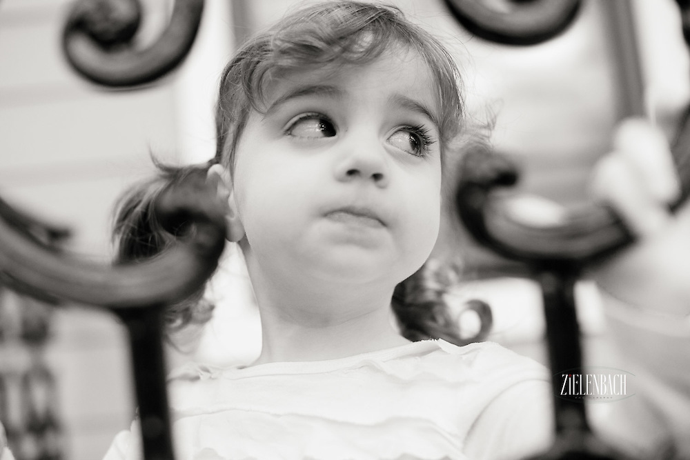 All images are Copyright Tim Zielenbach Photography, LLC.   <br /> <br /> studio@zielenbach.com    912.596.6921