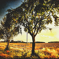 Textured image of a far off, tree lined country road in the southern Czech Republic, Europe.