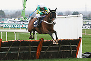Apple's Shakira and Barry Geraghty third in The Doom Bar Anniversary 4 Y O Juvenile Hurdle Race at Aintree, Liverpool, United Kingdom on 12 April 2018. Picture by Craig Galloway.