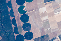 In 2013, this part of Bahia State in Brazil included just a single center-pivot irrigation circle. In this photograph taken in 2015 by an astronaut on the space station, new circles - each about 2 kilometers (1.2 miles) in diameter - are tightly packed and overlaid on the original rectangular farm grid. Like a Pac-Man, one circle appears to be swallowing a farm house. The ragged lines of a forested stream (left) contrast with the sweeping, ghostly shapes of plowed stream beds (image center).<br /> As Brazil's economy rapidly expands, center-pivot technology is being introduced to counter the effects of irregular rains and drought in Bahia's drier interior. Agribusiness crops grown in this part of the state include soy beans, corn, cotton and sisal. The nearby town of Magalhães has experienced the fastest growth in all of Brazil, as its population more than doubled between 2004 and 2007.<br /> Astronaut photograph ISS044-E-22556 was acquired on July 26, 2015, with a Nikon D4 digital camera using an 1150 millimeter lens, and is provided by the ISS Crew Earth Observations Facility and the Earth Science and Remote Sensing Unit, Johnson Space Center. The image was taken by a member of the Expedition 44 crew. The image has been cropped and enhanced to improve contrast, and lens artifacts have been removed. The International Space Station Program supports the laboratory as part of the ISS National Lab to help astronauts take pictures of Earth that will be of the greatest value to scientists and the public, and to make those images freely available on the Internet. Additional images taken by astronauts and cosmonauts can be viewed at the NASA/JSC Gateway to Astronaut Photography of Earth. Caption by M. Justin Wilkinson, Texas State University, Jacobs Contract at NASA-JSC.<br />  *** Please Use Credit from Credit Field ***