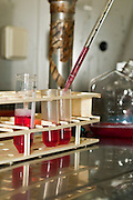 Microbiology Laboratory Cell Culture research