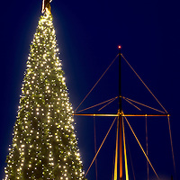 Kinsale Christmas Tree and Mast.<br /> Pic. John Allen