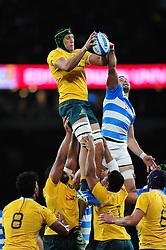 Adam Coleman of Australia wins the ball at a lineout - Mandatory byline: Patrick Khachfe/JMP - 07966 386802 - 08/10/2016 - RUGBY UNION - Twickenham Stadium - London, England - Argentina v Australia - The Rugby Championship.