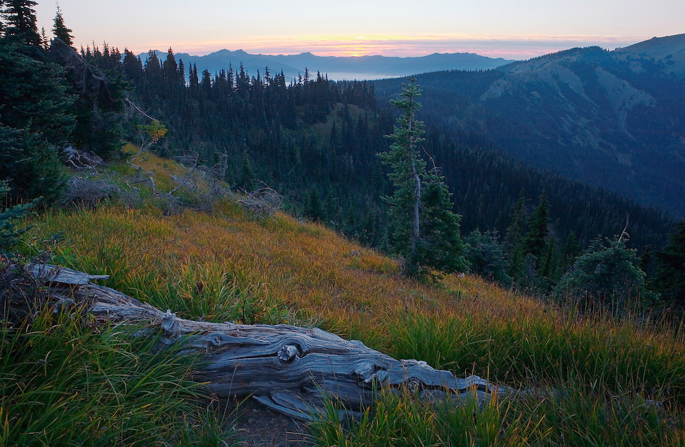 Sunset on Hurricane Ridge in Olympic National Park