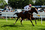 New Arrangement ridden by Franny Norton and trained by James Tate in the Visit Sandstorm At Valuerater.Co.Uk Novice Stakes race.  - Ryan Hiscott/JMP - 15/09/2019 - PR - Bath Racecourse - Bath, England - Race Meeting at Bath Racecourse