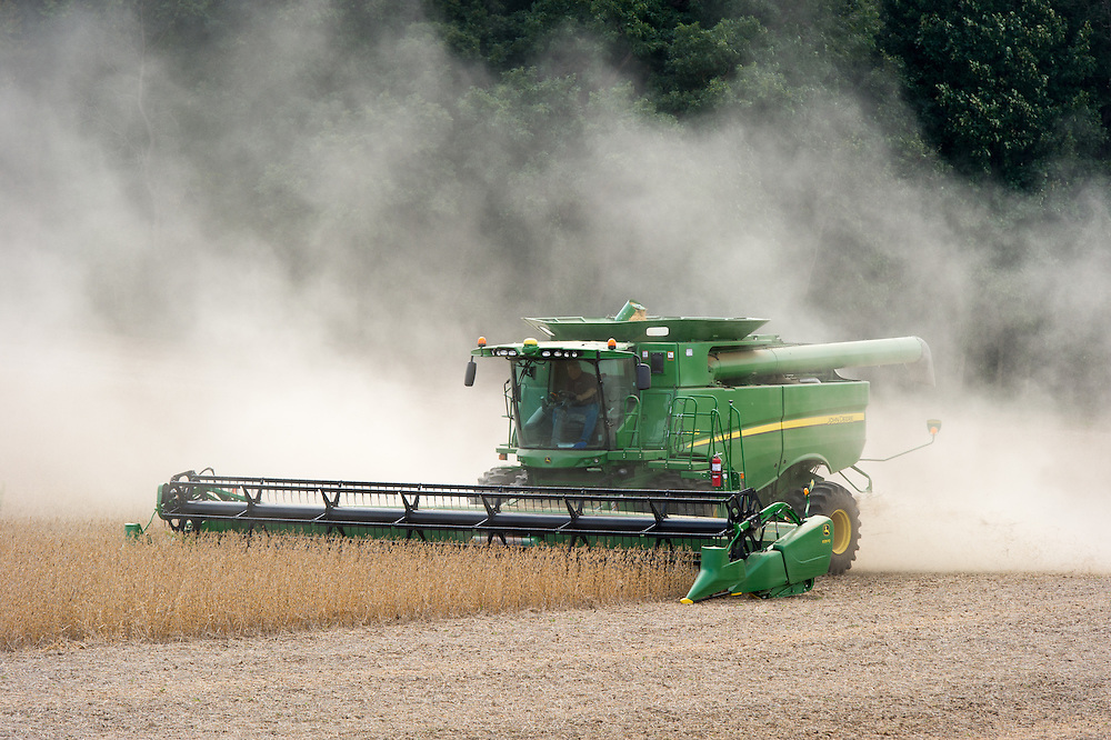 Combine harvesting soybeans in Laytonsville, Maryland, USA
